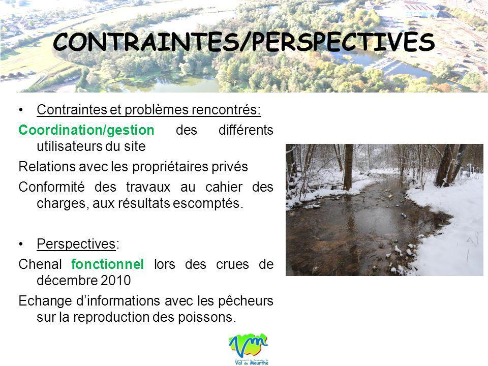 CONTRAINTES/PERSPECTIVES