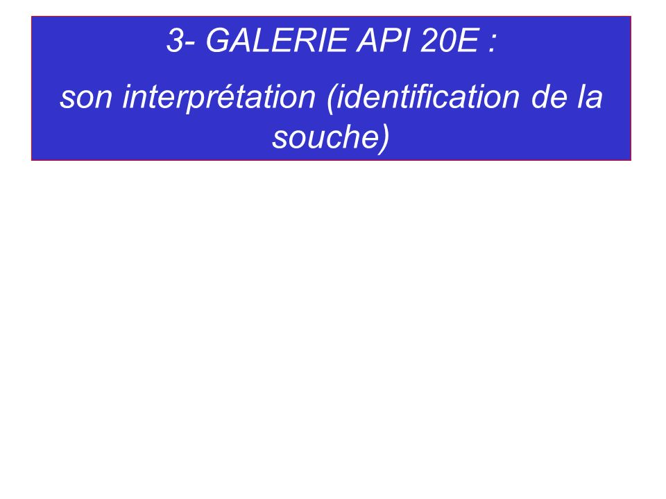 son interprétation (identification de la souche)