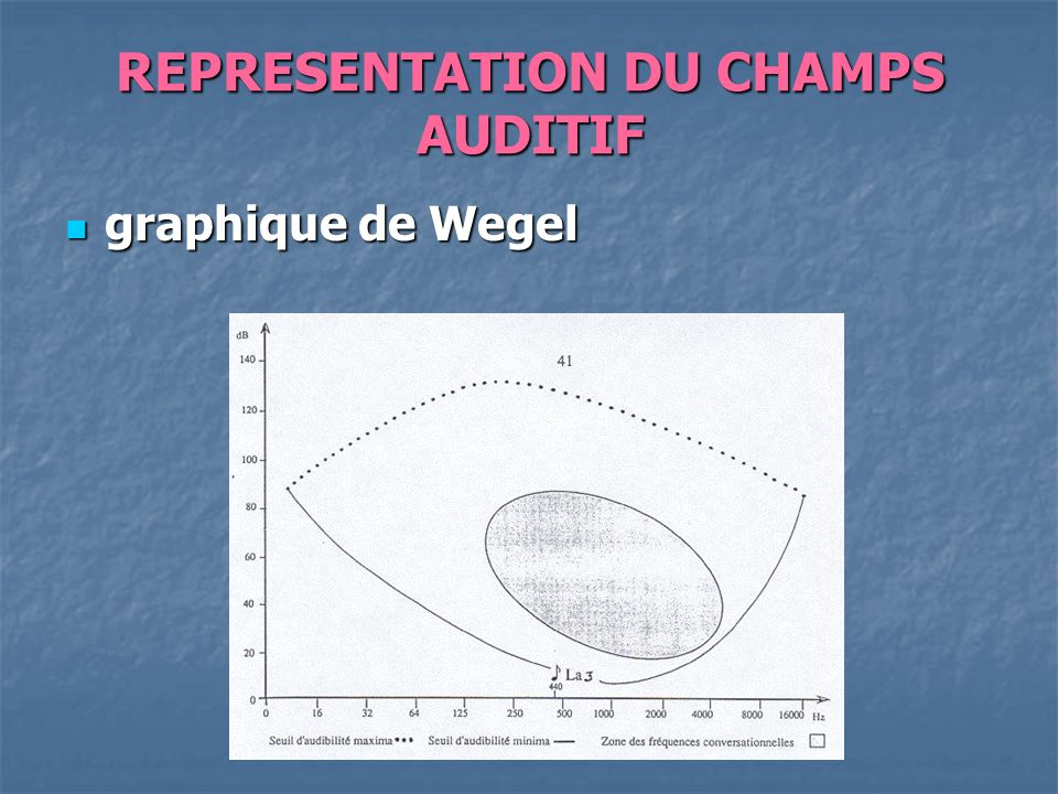 REPRESENTATION DU CHAMPS AUDITIF