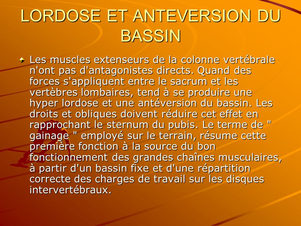 LORDOSE ET ANTEVERSION DU BASSIN