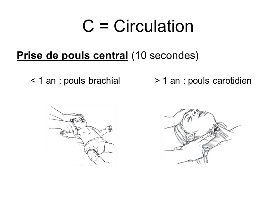 C = Circulation Prise de pouls central (10 secondes)