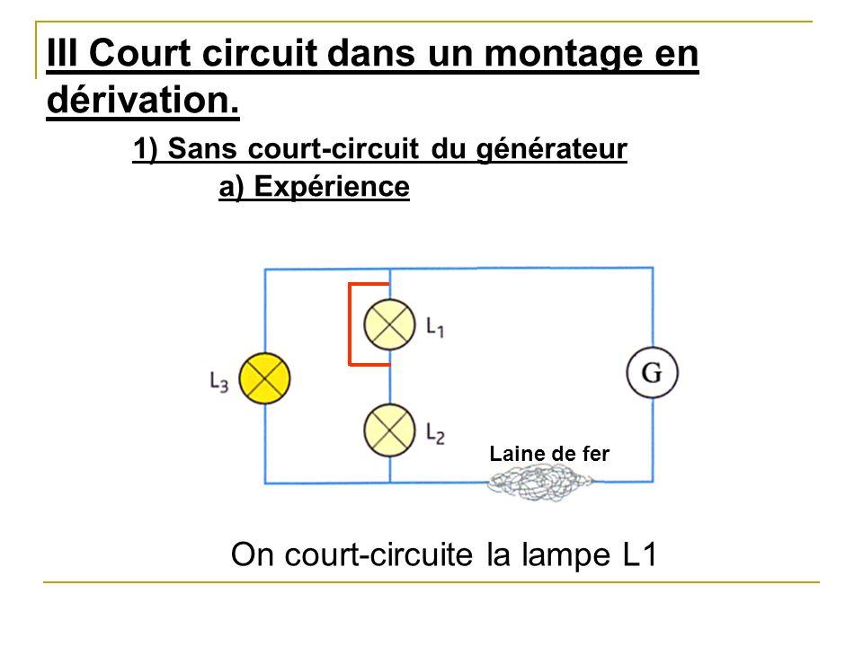 circuit lectrique comportant des boucles en d rivation ppt t l charger. Black Bedroom Furniture Sets. Home Design Ideas