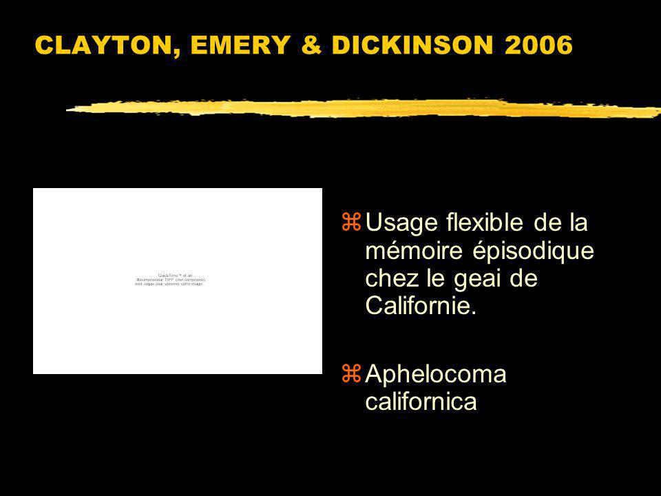 CLAYTON, EMERY & DICKINSON 2006