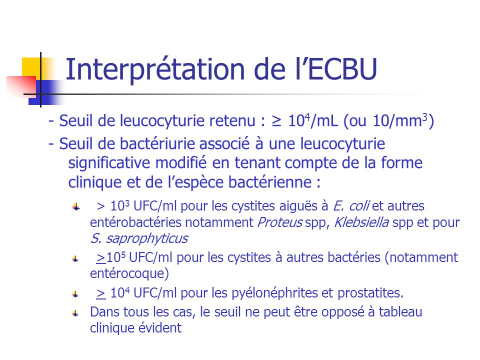 Interprétation de l'ECBU
