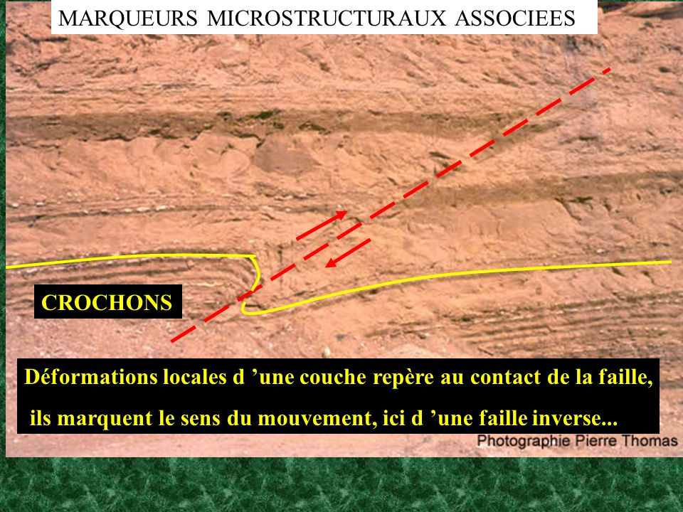 MARQUEURS MICROSTRUCTURAUX ASSOCIEES