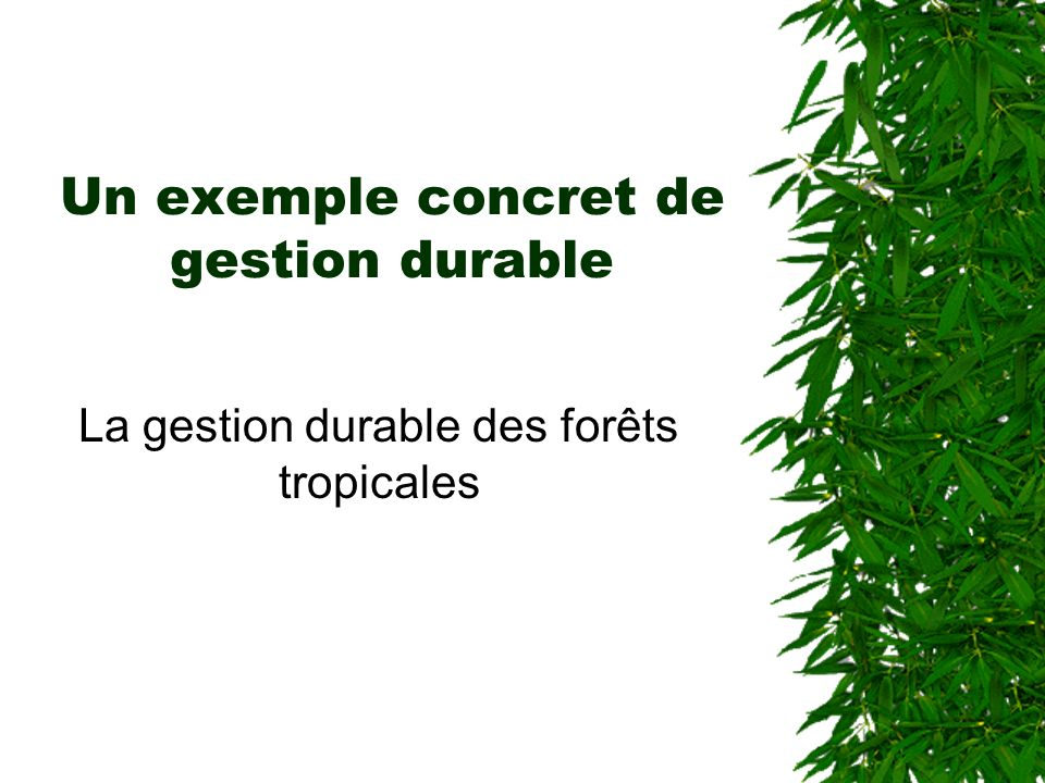 Un exemple concret de gestion durable