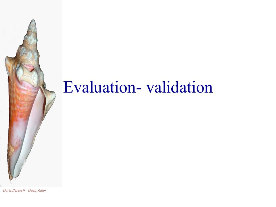 Evaluation- validation