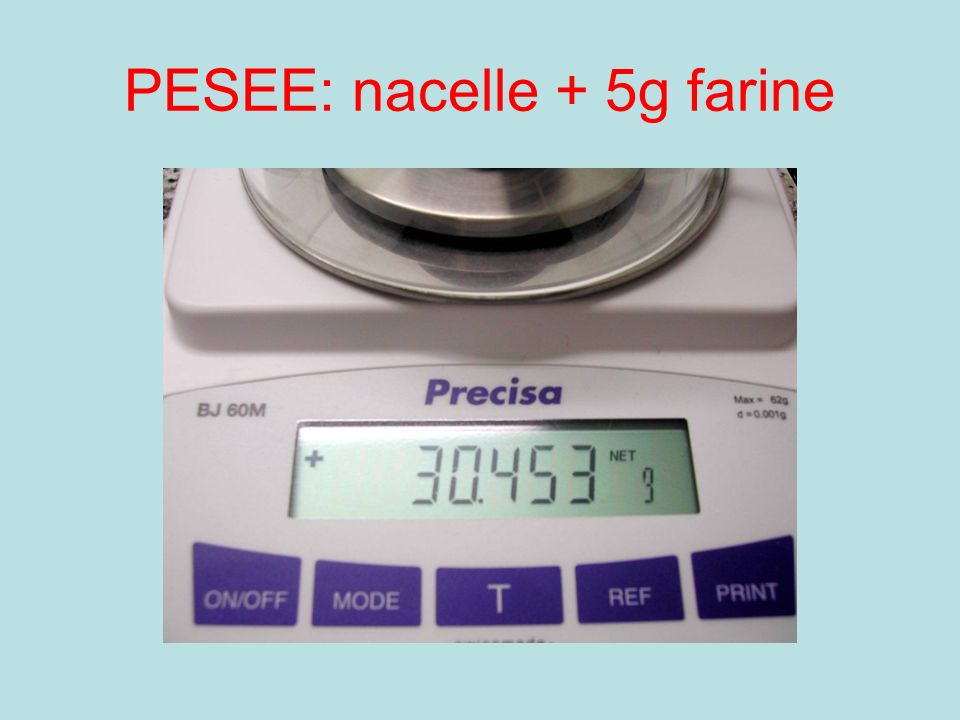 PESEE: nacelle + 5g farine