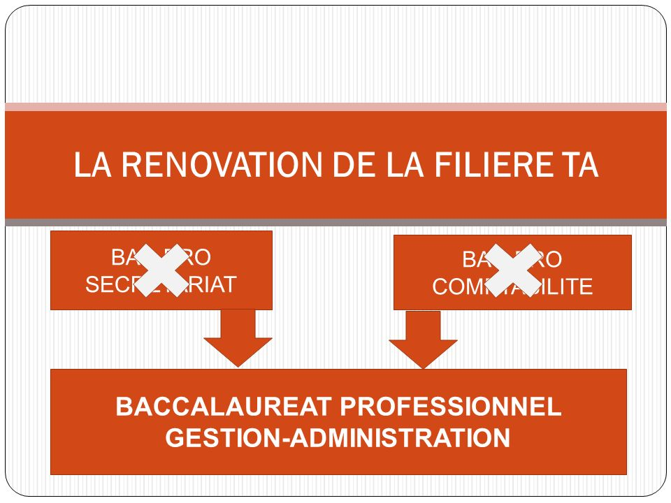 LA RENOVATION DE LA FILIERE TA