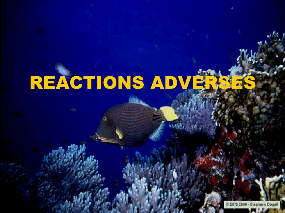 REACTIONS ADVERSES