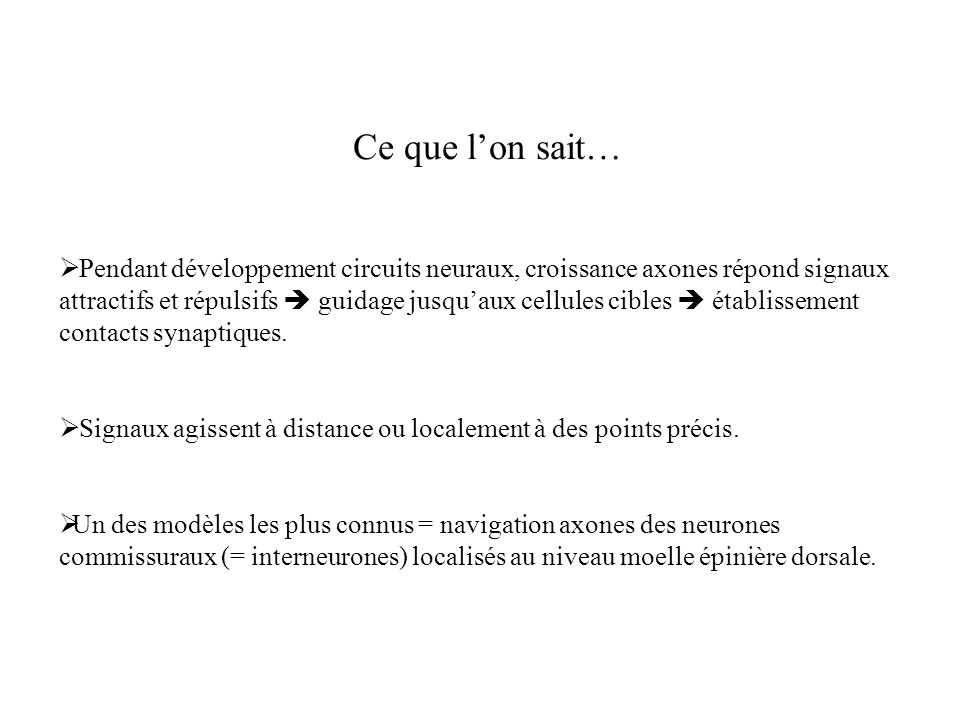 Ce que l'on sait…