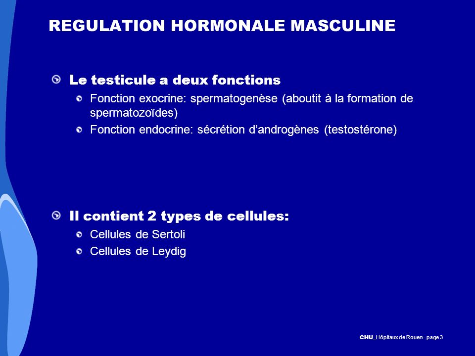 REGULATION HORMONALE MASCULINE
