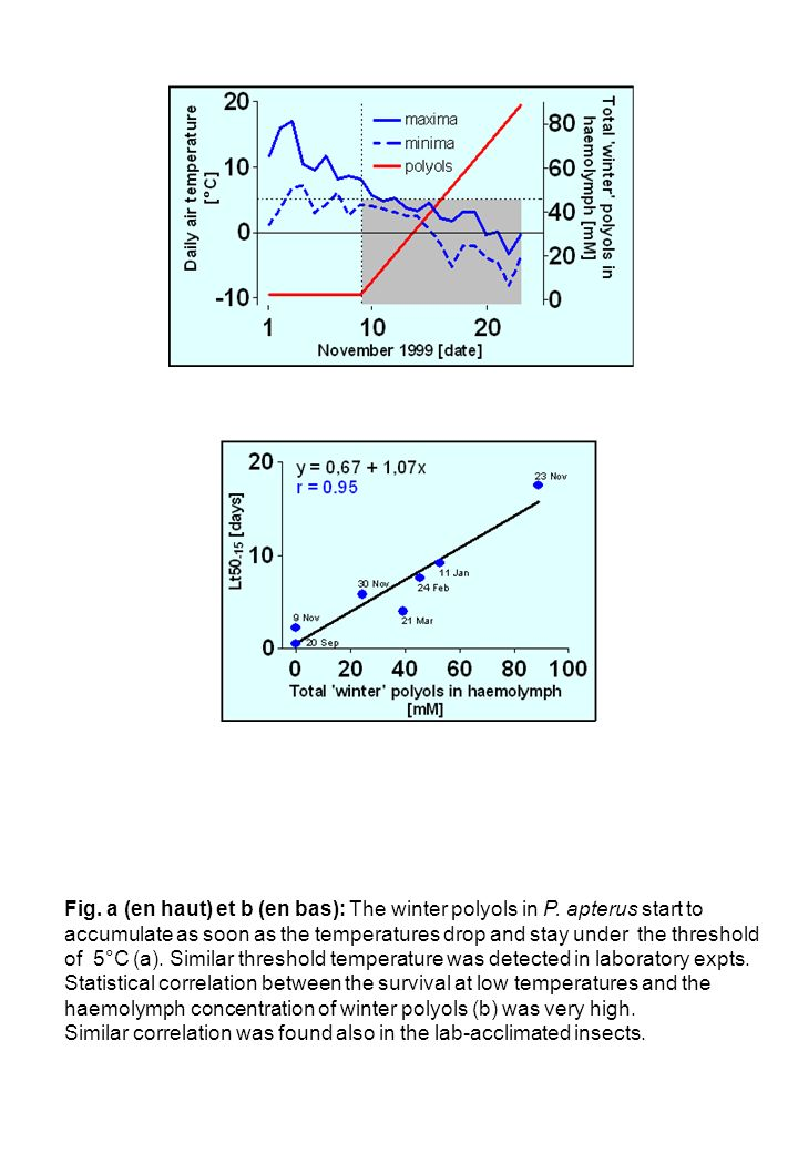 Fig. a (en haut) et b (en bas): The winter polyols in P