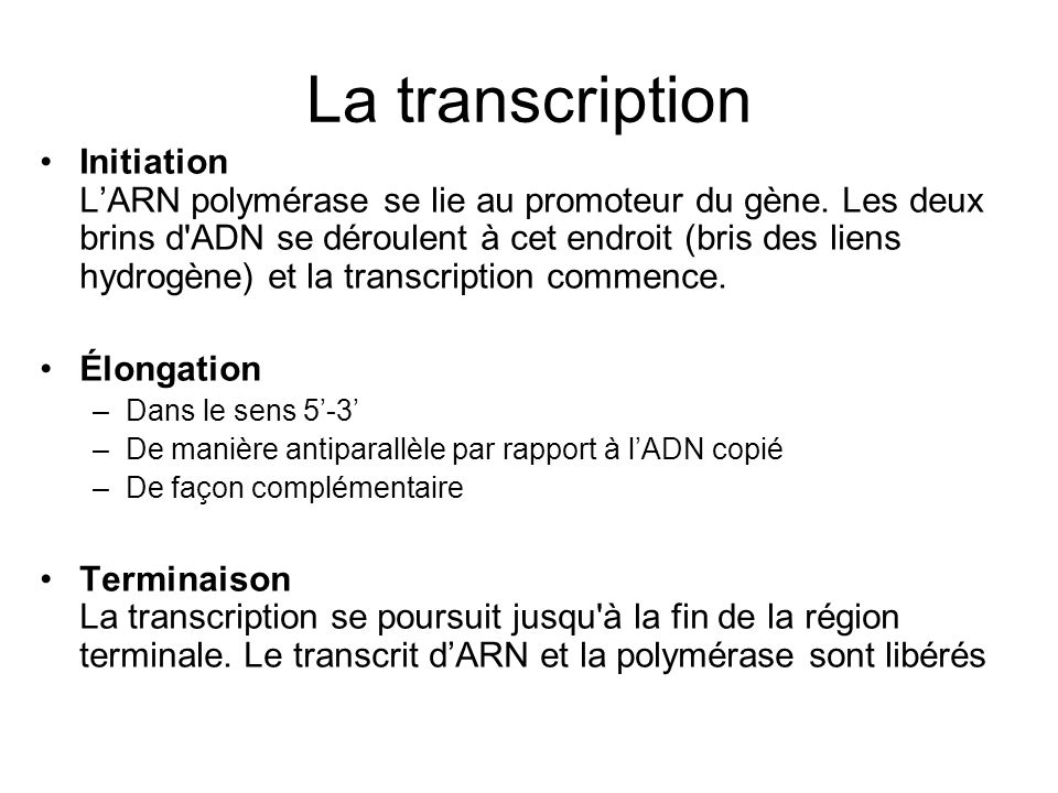 La transcription