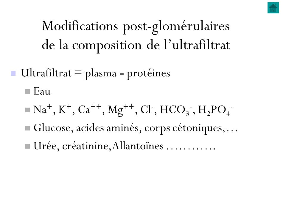 Modifications post-glomérulaires de la composition de l'ultrafiltrat