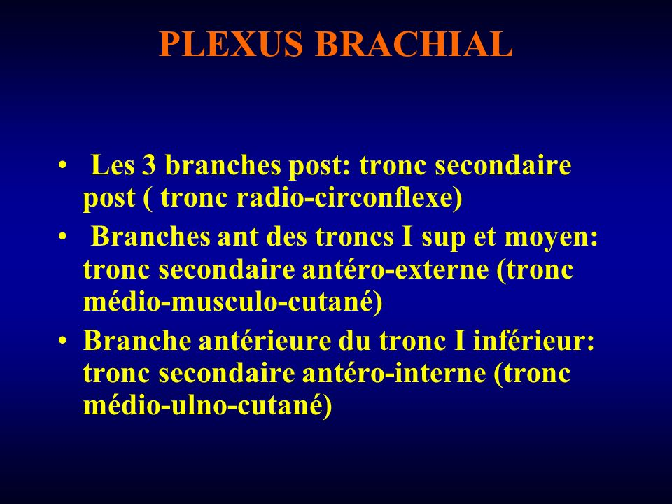PLEXUS BRACHIAL Les 3 branches post: tronc secondaire post ( tronc radio-circonflexe)