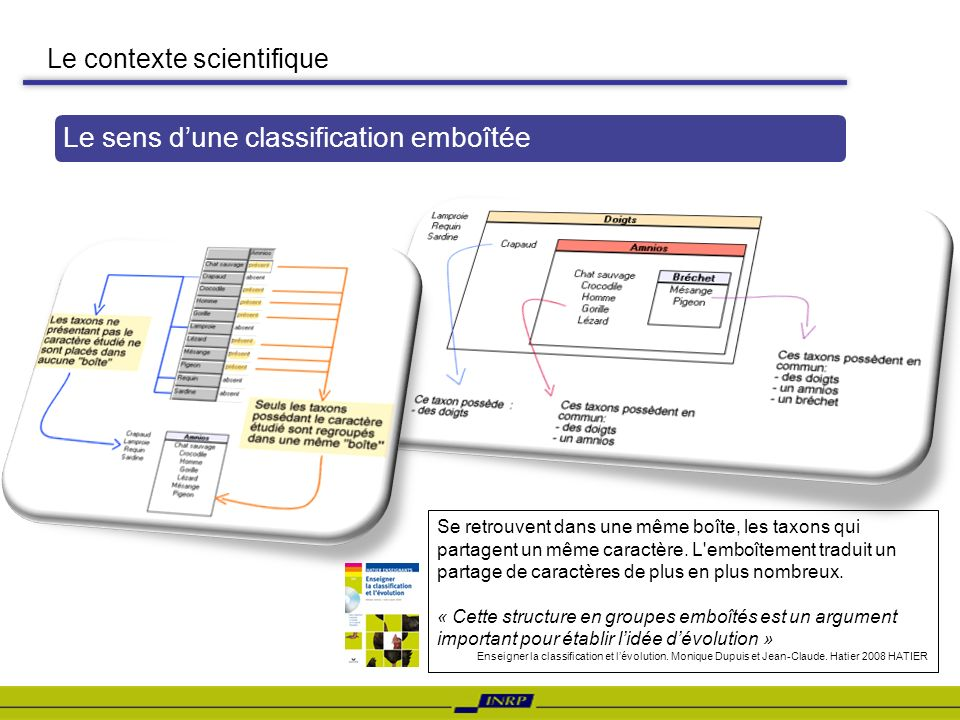 Le sens d'une classification emboîtée