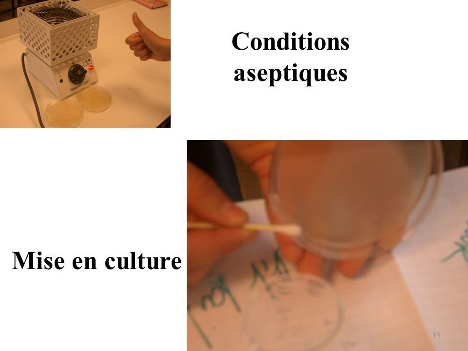Conditions aseptiques