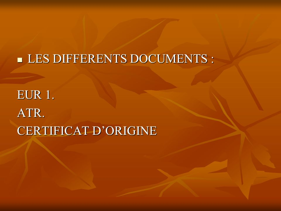 LES DIFFERENTS DOCUMENTS :