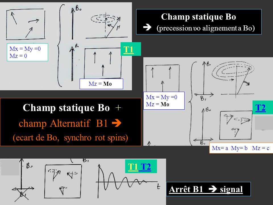 Champ statique Bo  (precession υo alignement a Bo)