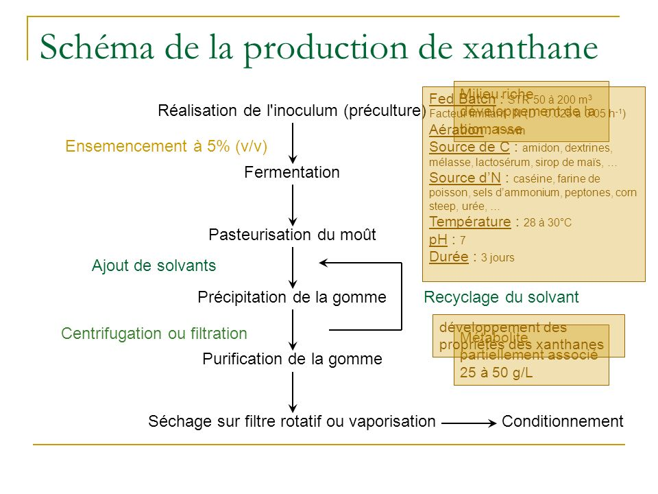 Schéma de la production de xanthane