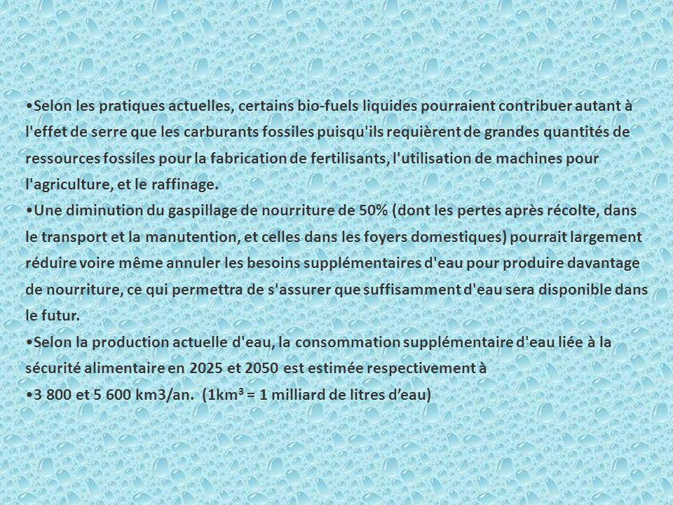 abus consommation d eau agriculture