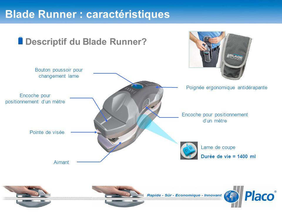 Blade Runner Placo Gamboahinestrosa