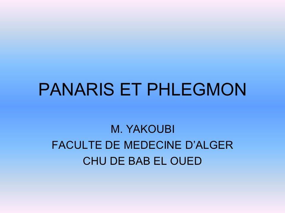 prothese de jambe algérie