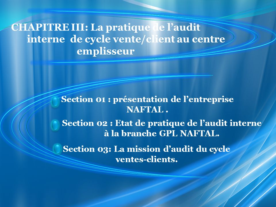 etude de cas audit interne pdf