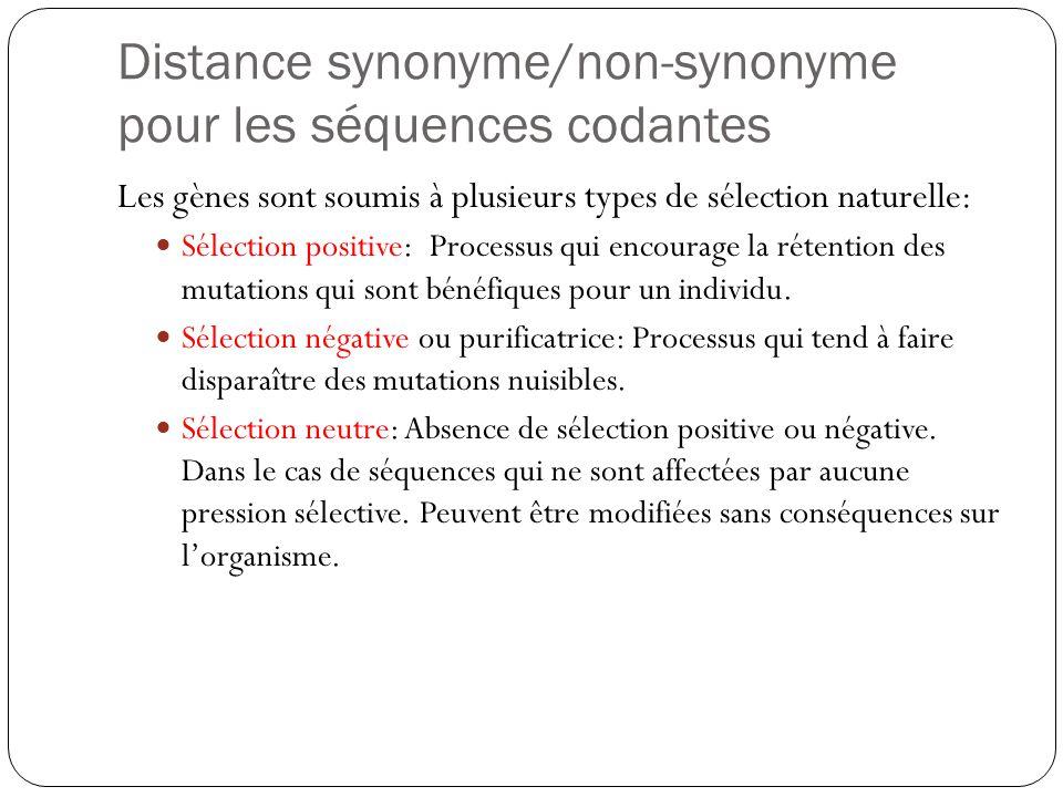 Introduction A La Phylogenie Ppt Video Online Telecharger