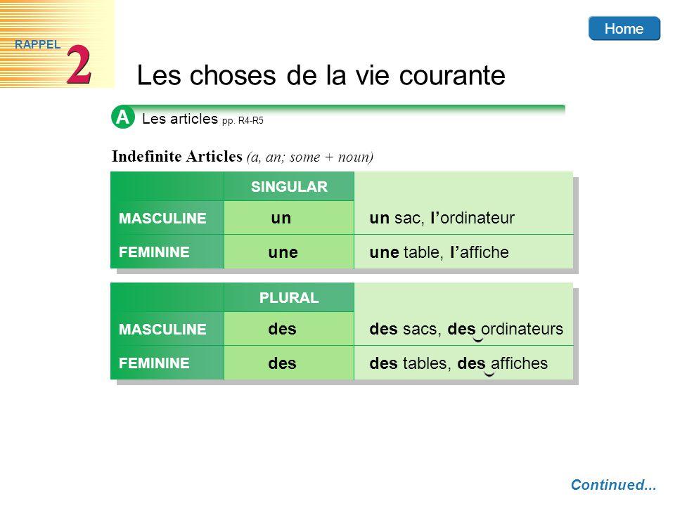 affiche masculine or feminine
