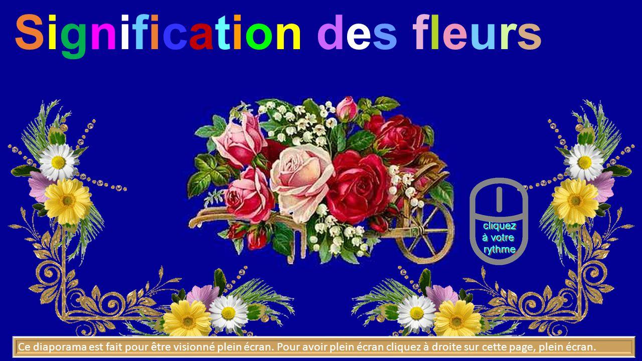 Signification Des Fleurs Ppt Video Online Telecharger