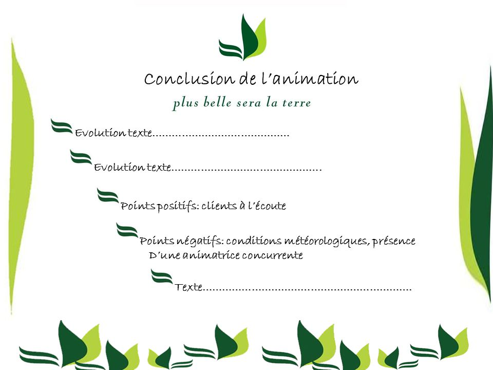 Conclusion de l'animation