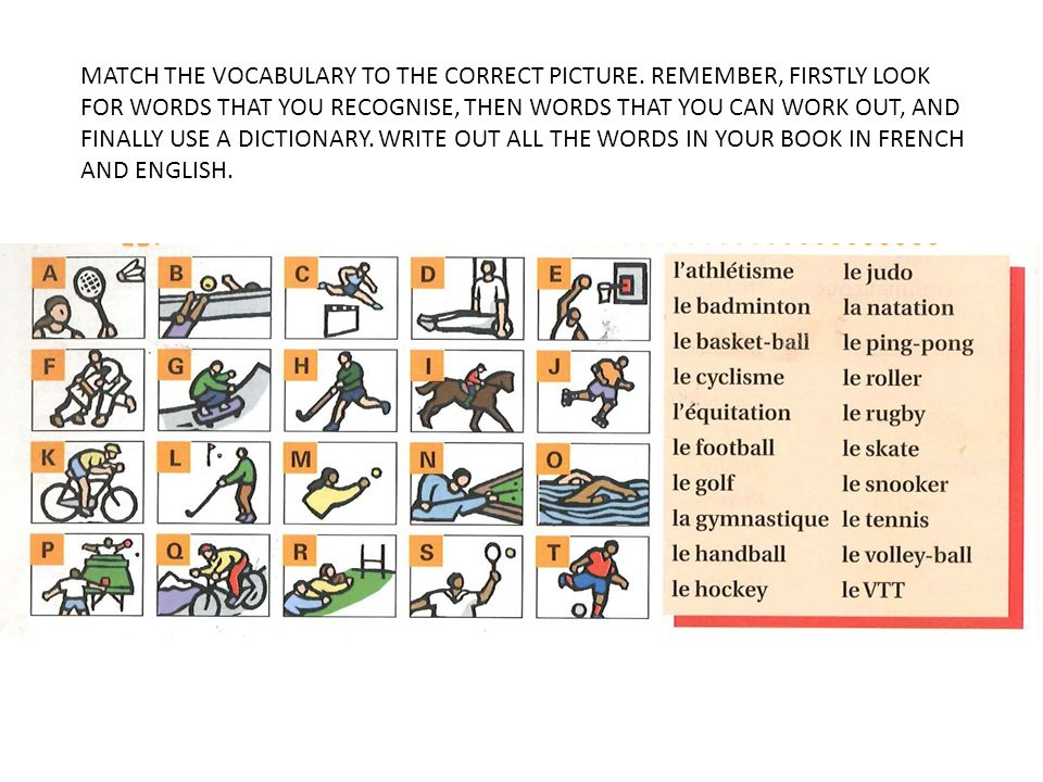 MATCH THE VOCABULARY TO THE CORRECT PICTURE
