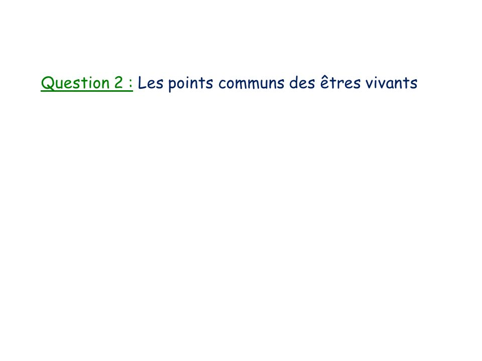 Question 2 : Les points communs des êtres vivants