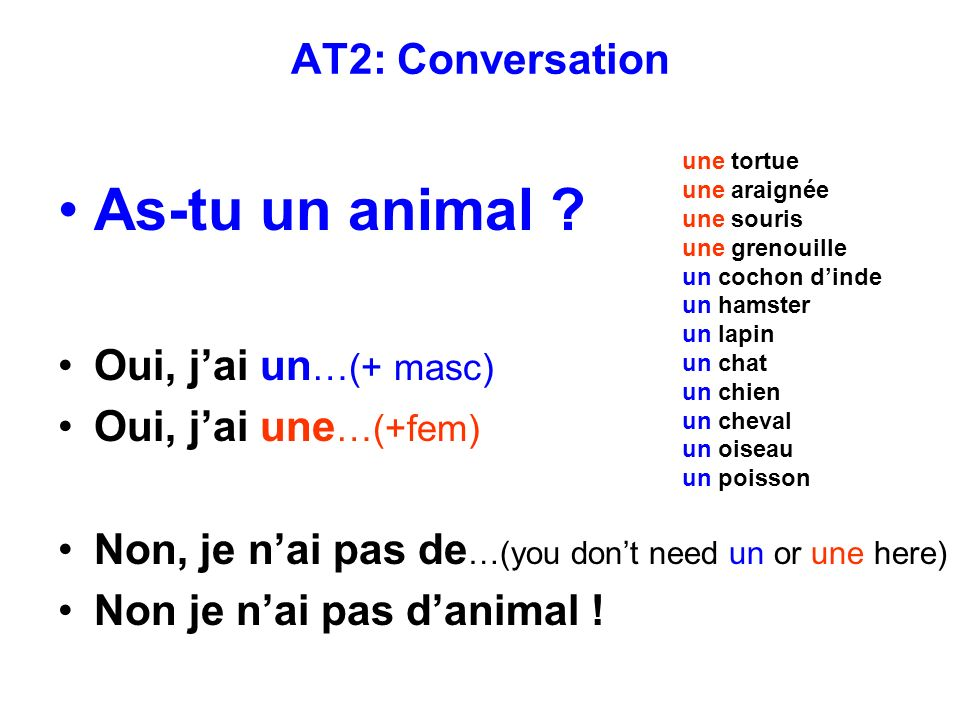 As-tu un animal AT2: Conversation Oui, j'ai un…(+ masc)