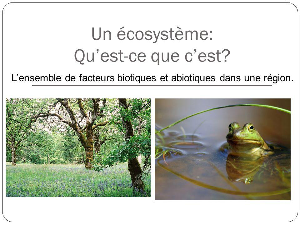 Les Interactions Au Sein Des écosystèmes Chapitre 1 Ppt Télécharger
