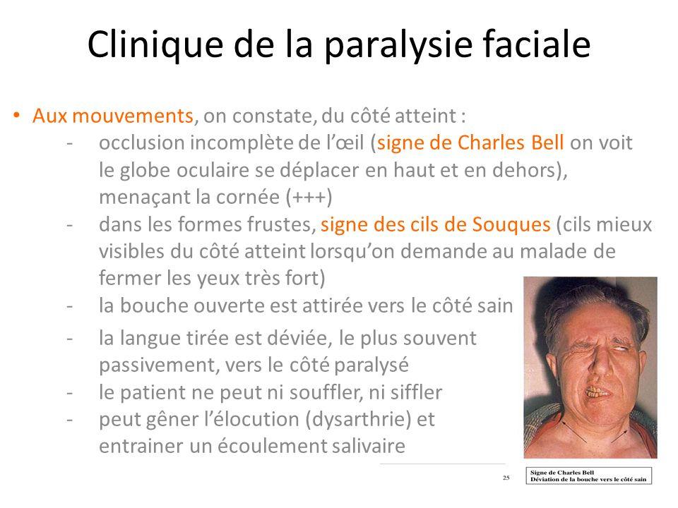 Module neurologique bac 3 BKR - ppt video online télécharger