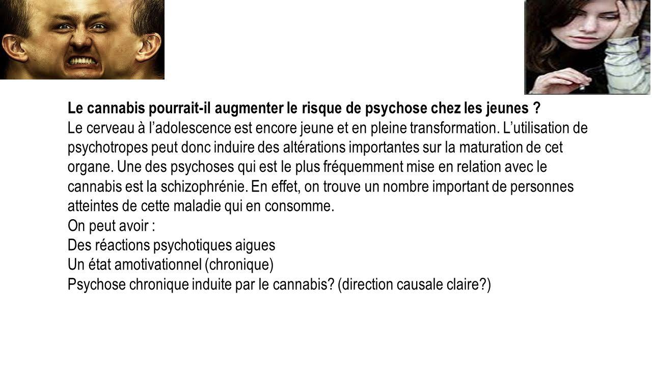 cannabis drogue douce ppt video online t l charger. Black Bedroom Furniture Sets. Home Design Ideas