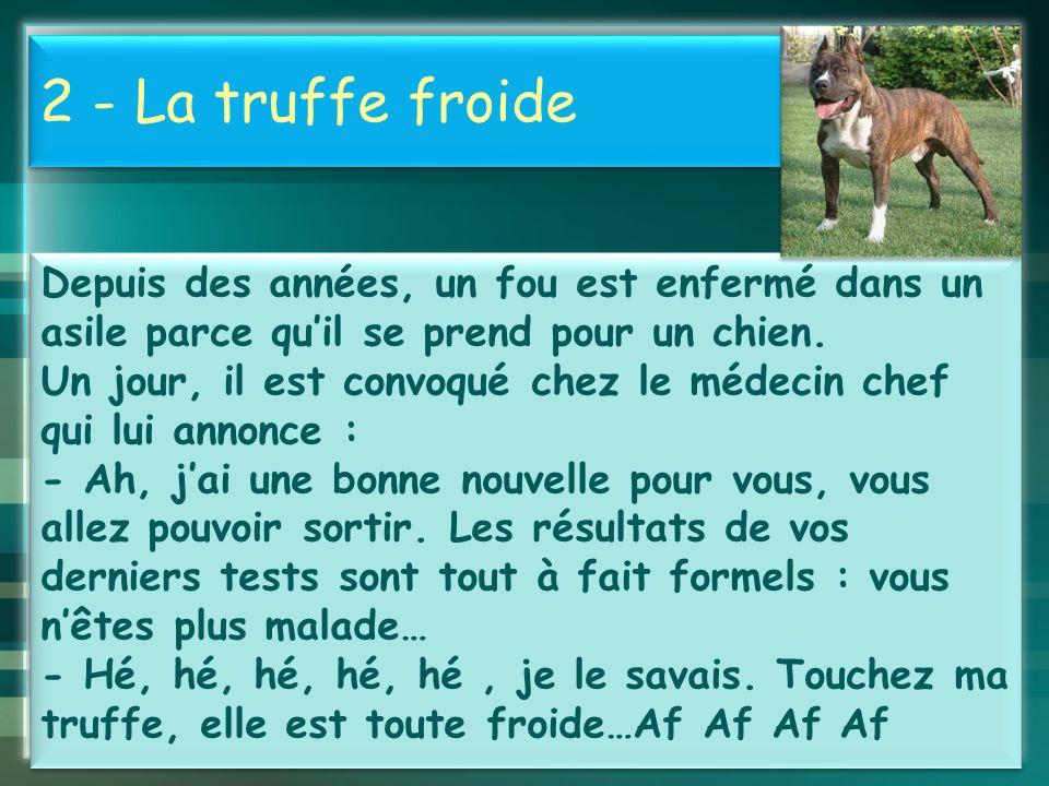 Histoires drôles et courtes - ppt video online télécharger 4 2 ...