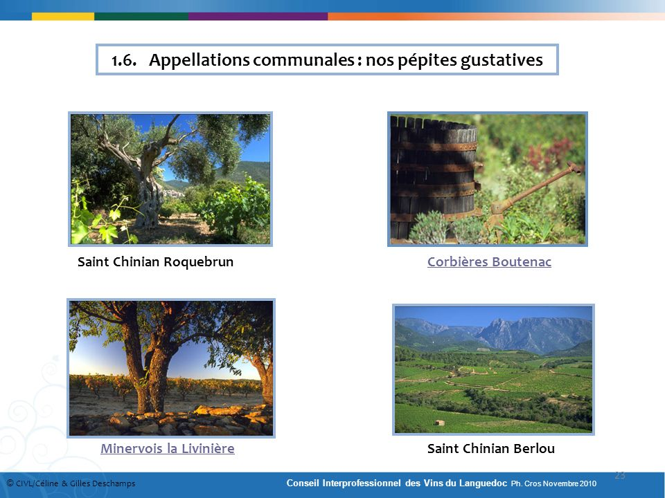 1.6. Appellations communales : nos pépites gustatives