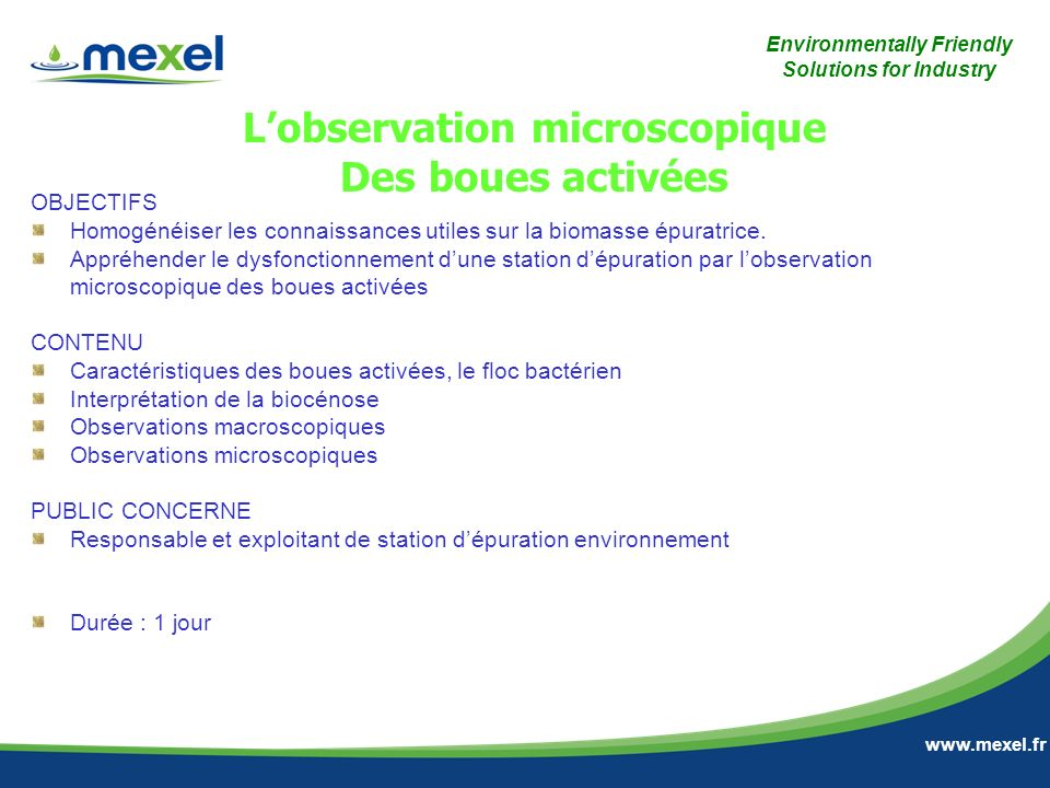 L'observation microscopique