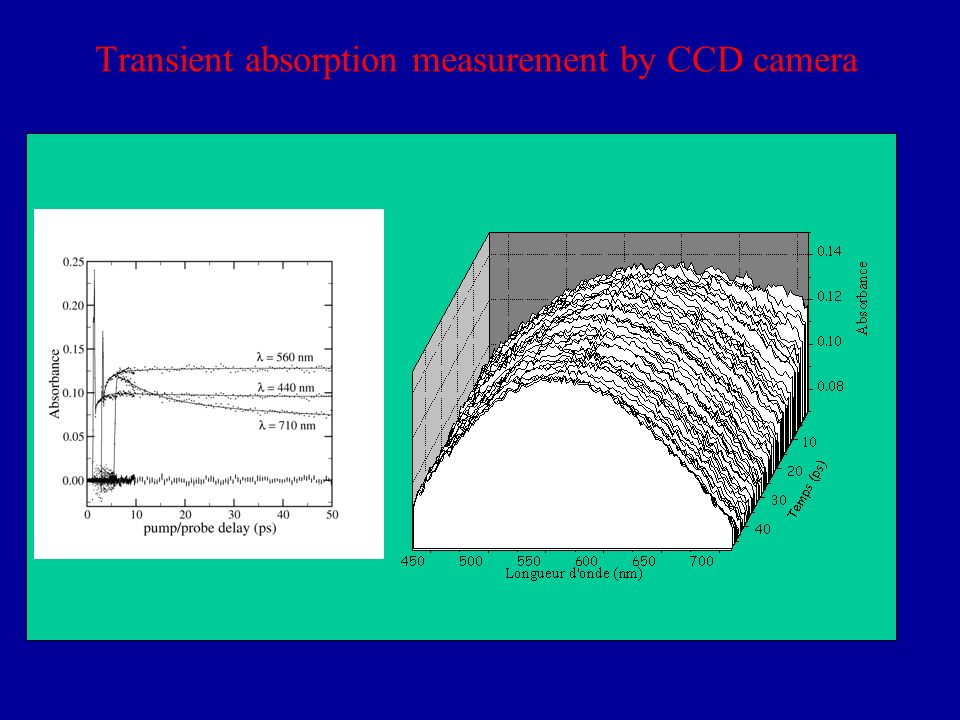 Transient absorption measurement by CCD camera