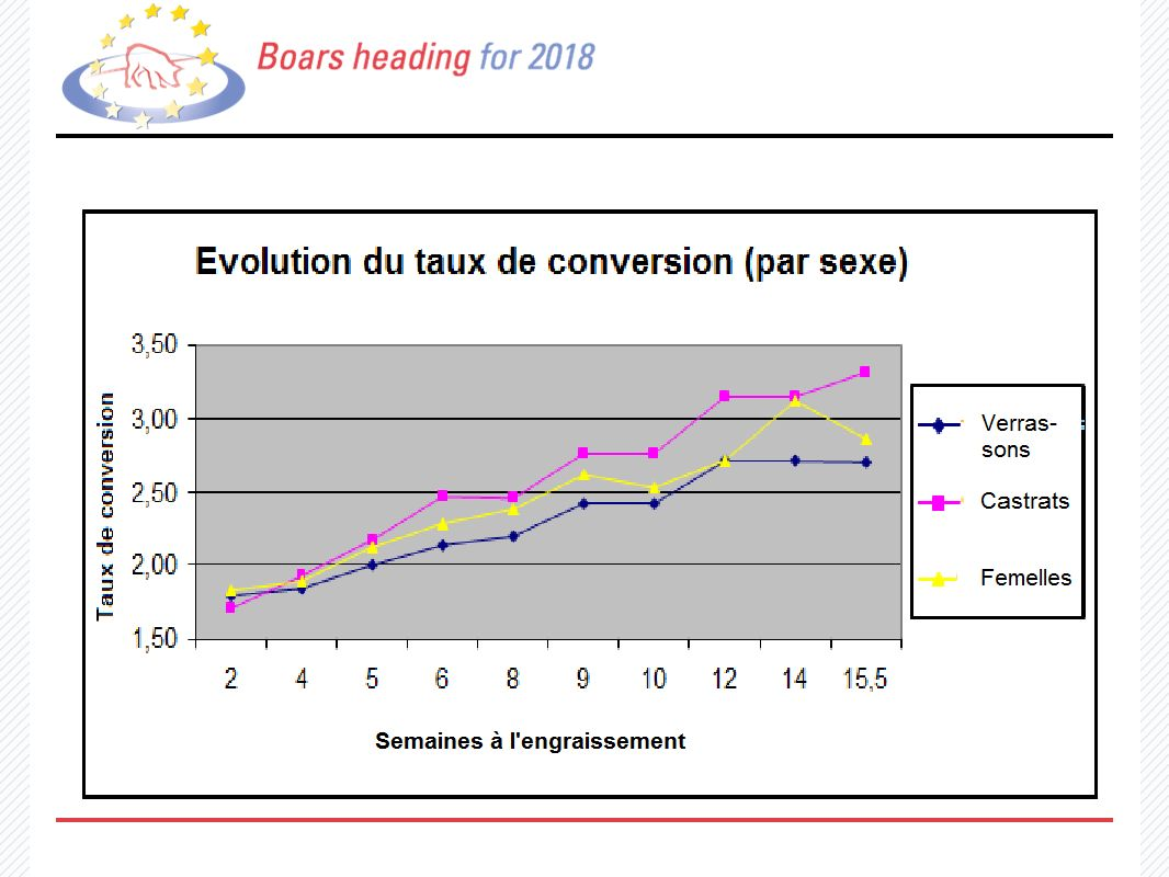 13 Evolution du taux de conversion (par sexe)