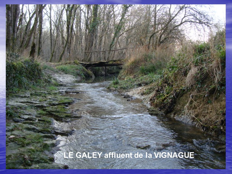 LE GALEY affluent de la VIGNAGUE