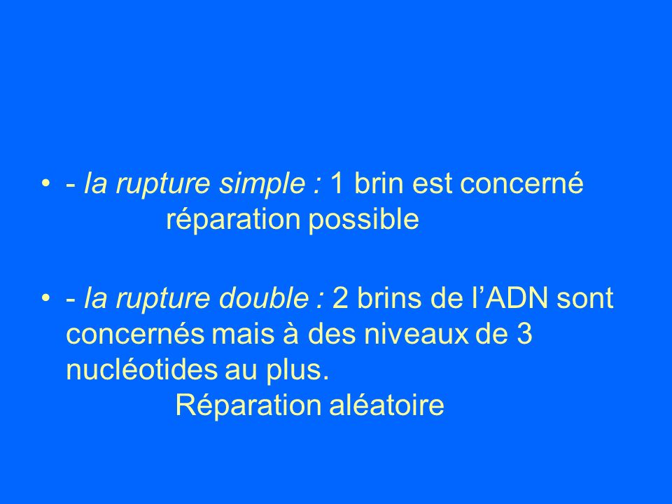 - la rupture simple : 1 brin est concerné réparation possible
