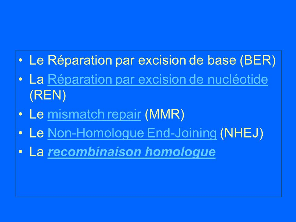 Le Réparation par excision de base (BER)