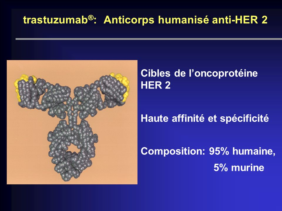 trastuzumab®: Anticorps humanisé anti-HER 2