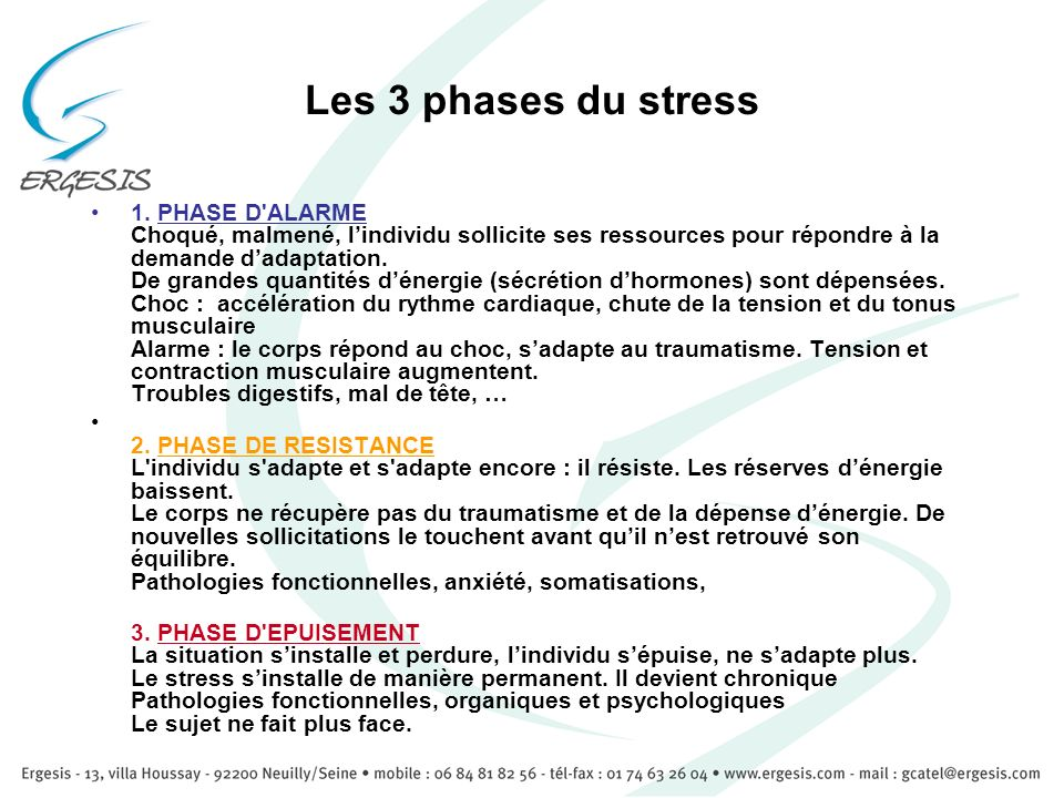 Les 3 phases du stress