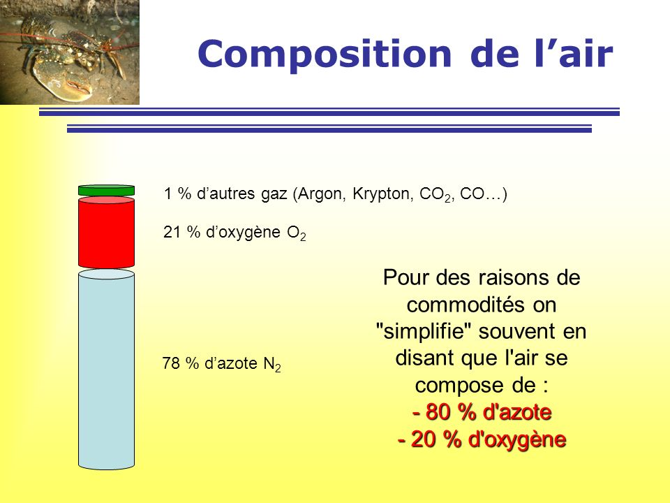 Composition de l'air 1 % d'autres gaz (Argon, Krypton, CO2, CO…) 21 % d'oxygène O2.
